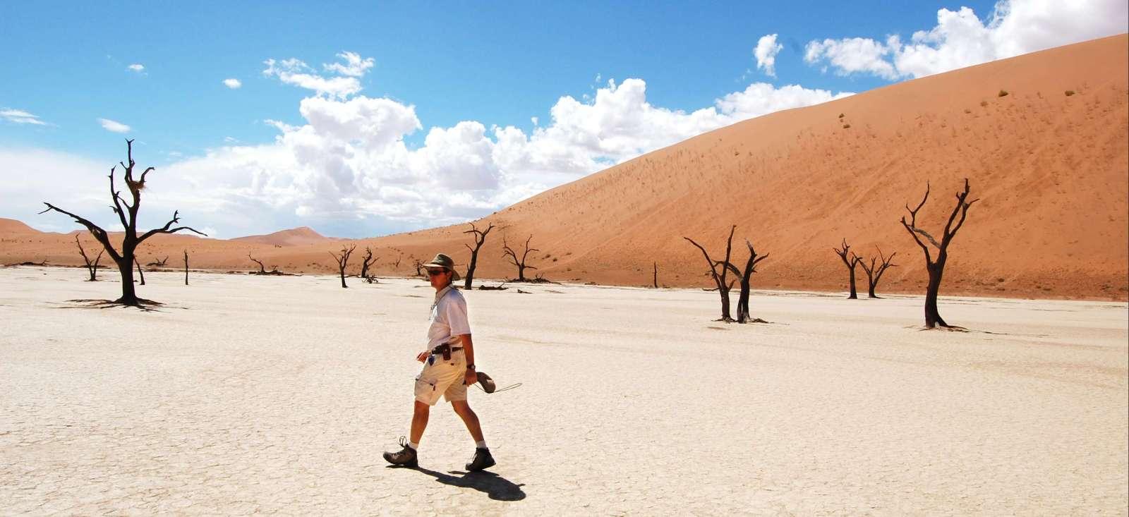 Voyage avec des animaux : Namibie : Balade australe