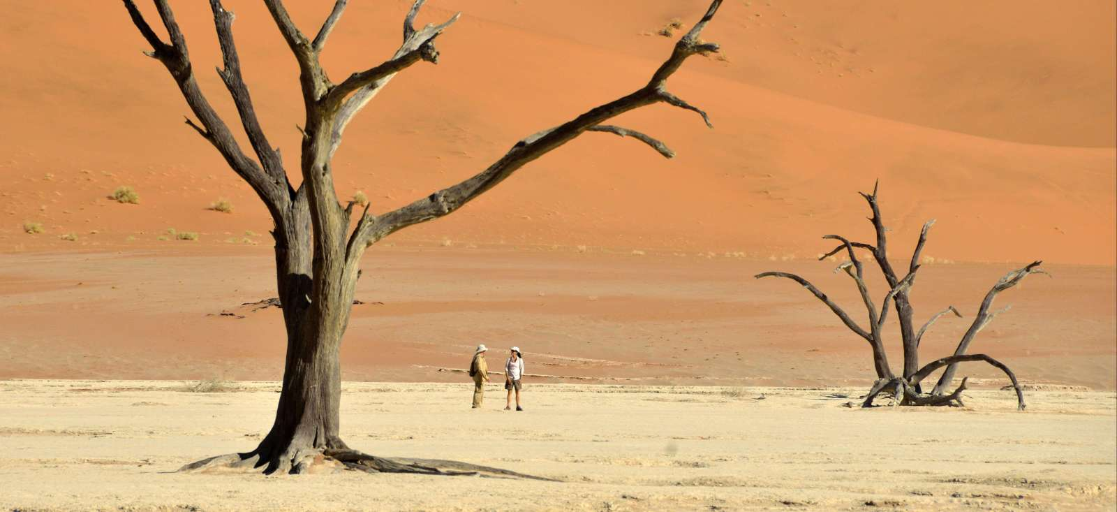 Voyage à pied : Randonnées et pistes namibiennes