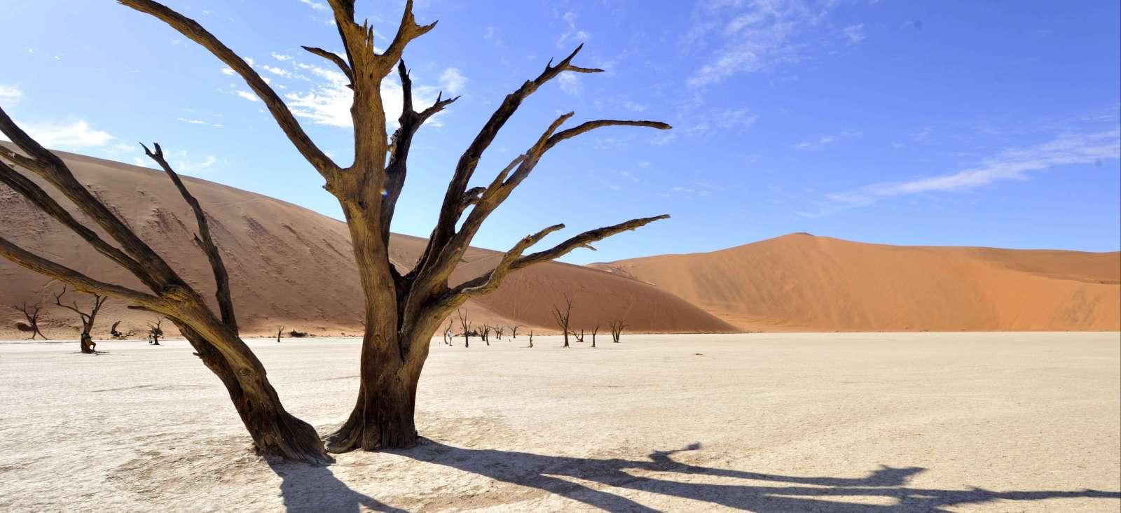 Voyage en véhicule : En piste du Namib aux chutes Victoria