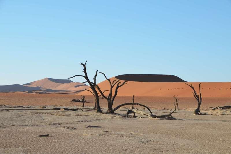 Voyage en véhicule : Shongololo, un train pour l\'aventure