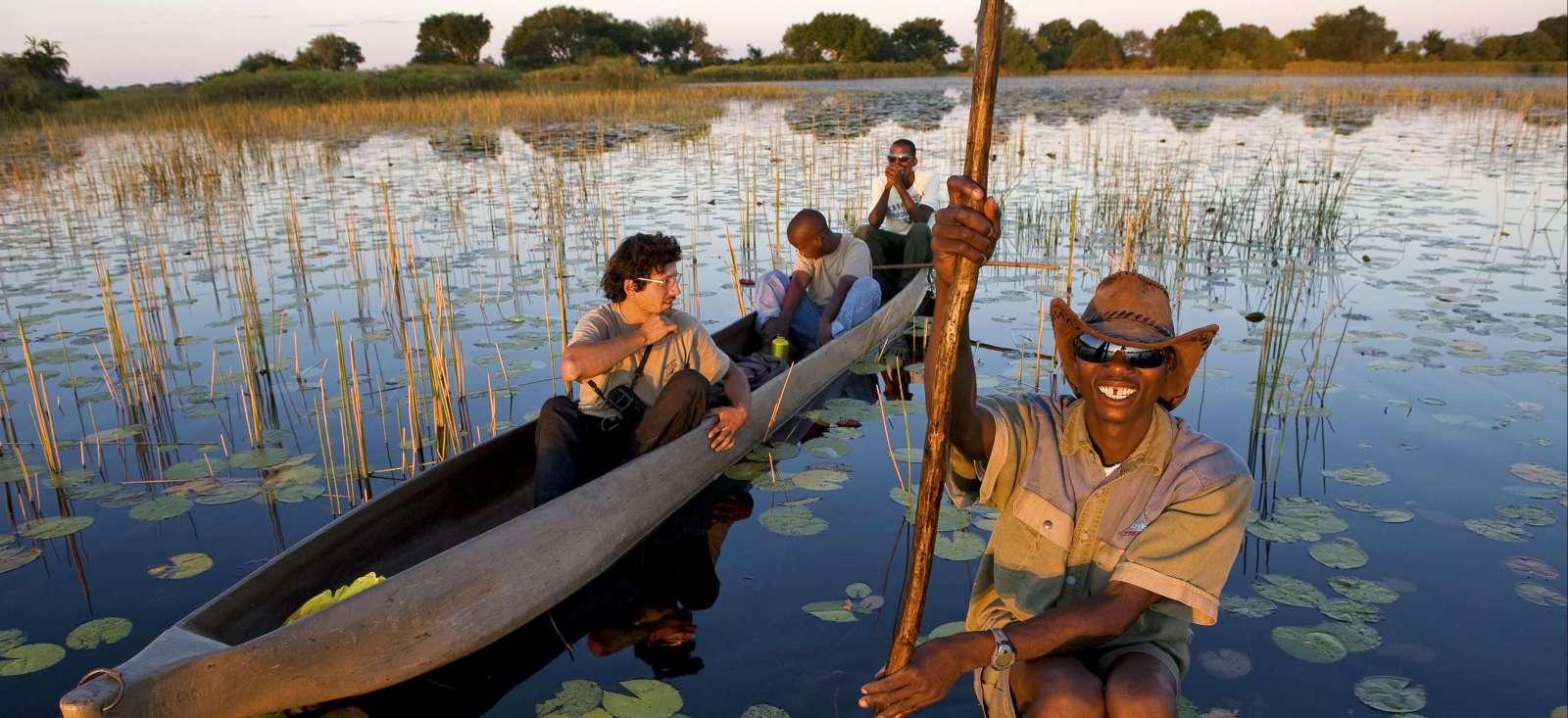 Voyage avec des animaux : De la Namibie à Victoria Falls