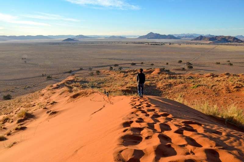 Voyage avec des animaux : Balade australe