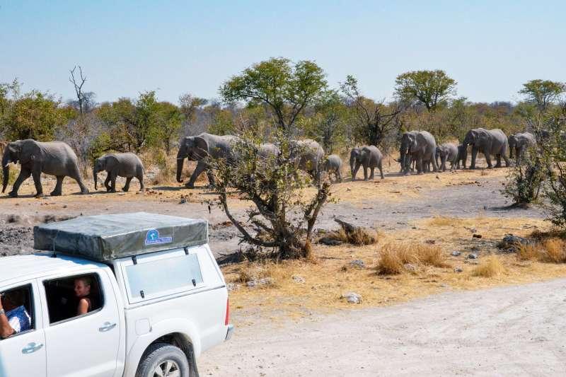 Voyage en véhicule : Bivouac sur les pistes namibiennes