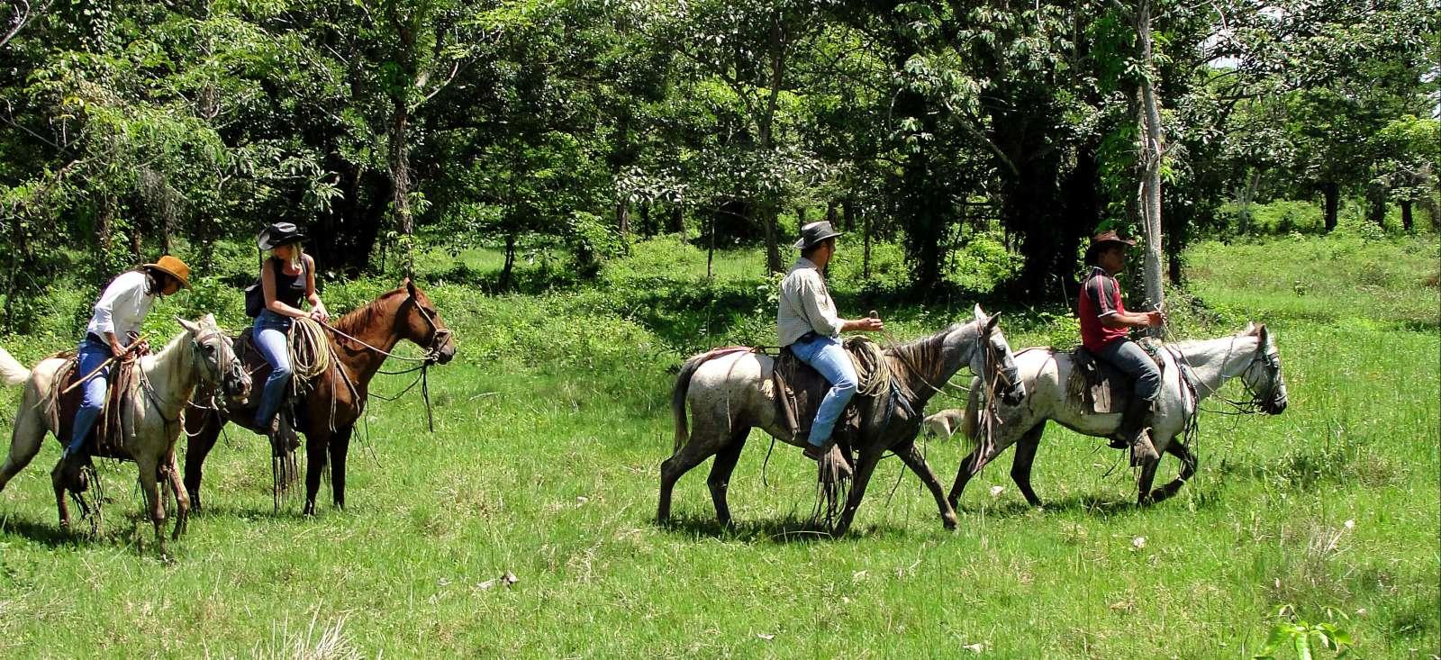 Voyage avec des animaux Nicaragua : Du Pantanal aux volcans, à cheval !