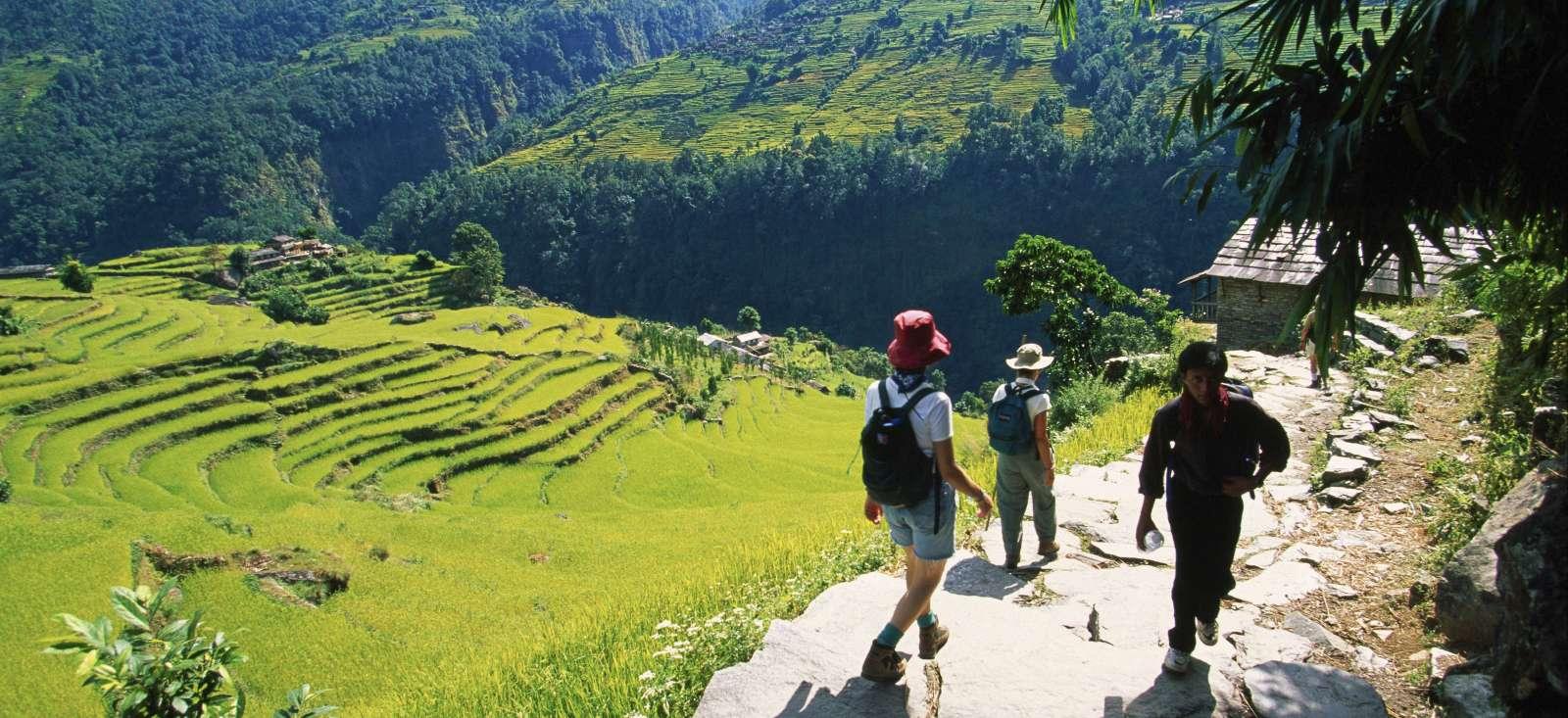 Voyage à pied : De Pokhara aux balcons des Annapurnas