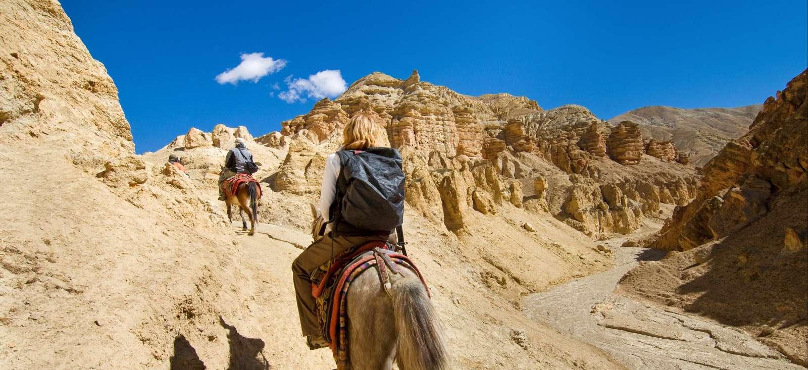 Image Sur les pistes du Mustang