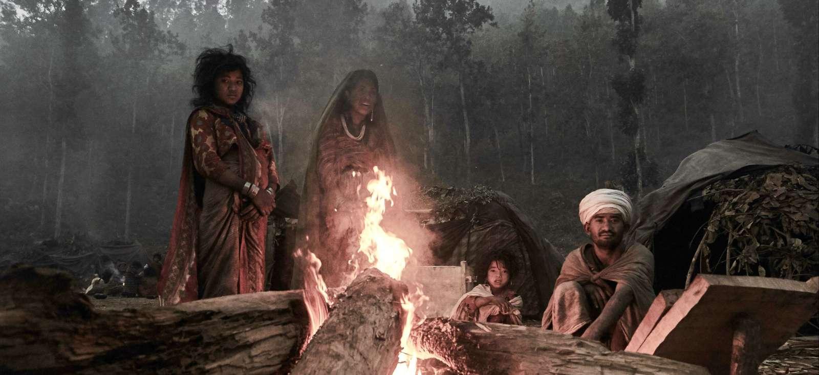 Voyage à pied : Chez les Rois de la jungle