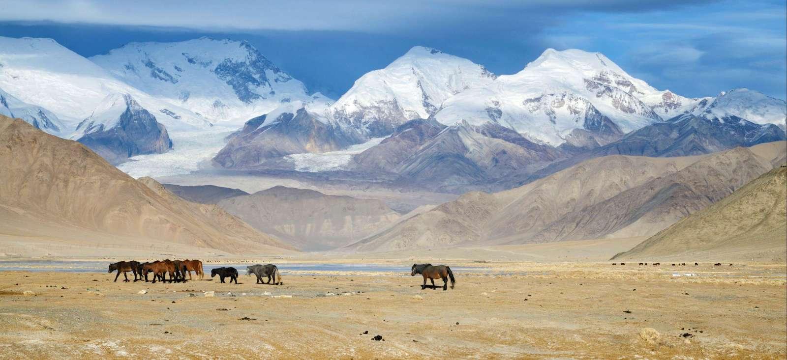 Voyage à pied : De Turpan à la Hunza par Kashgar