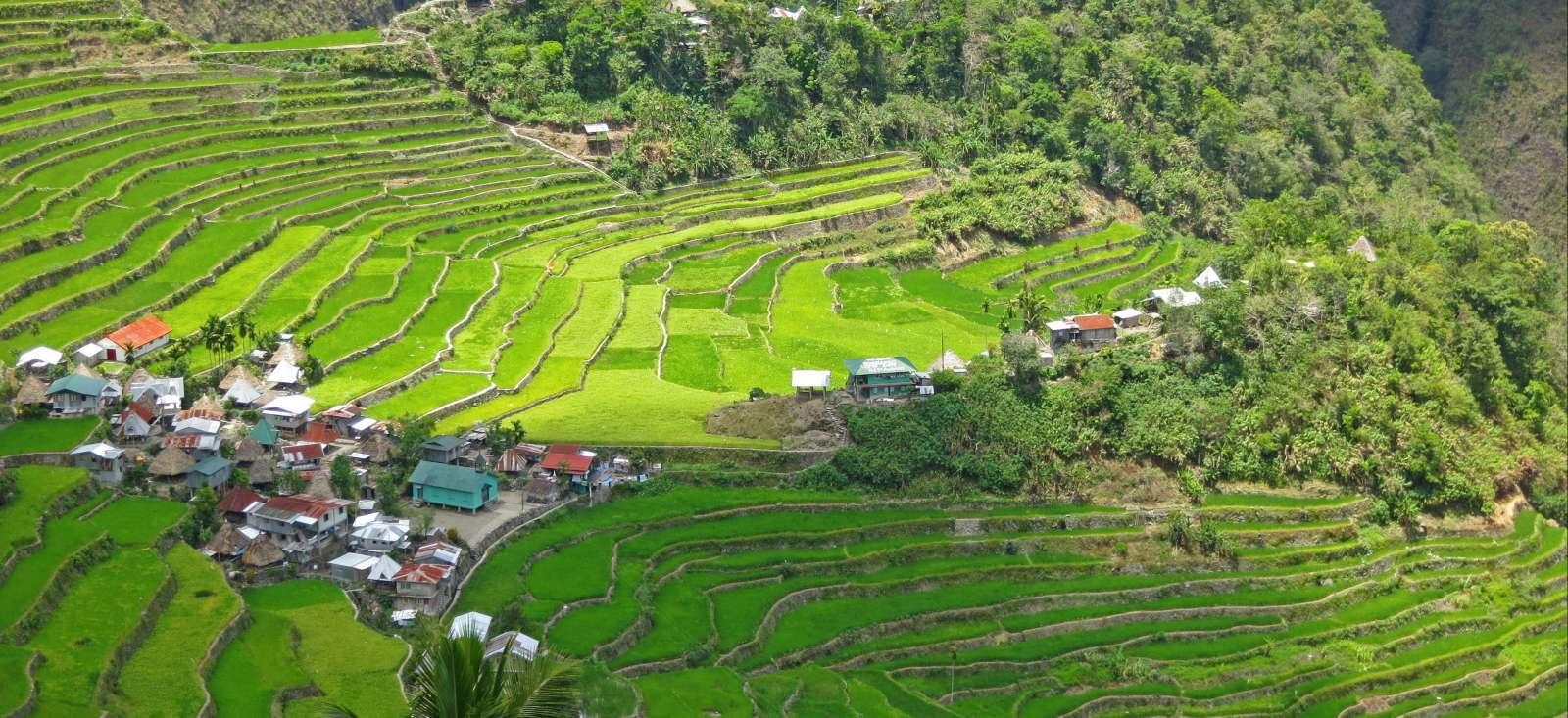 Voyage à pied : Tribus Ifugao & Archipel de Busuanga
