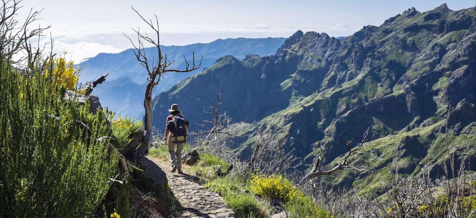 Voyage à pied : Le meilleur de Madère