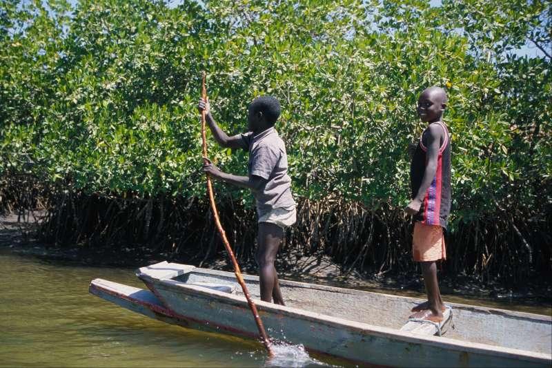 Voyage à pied : En famille au Siné Saloum...