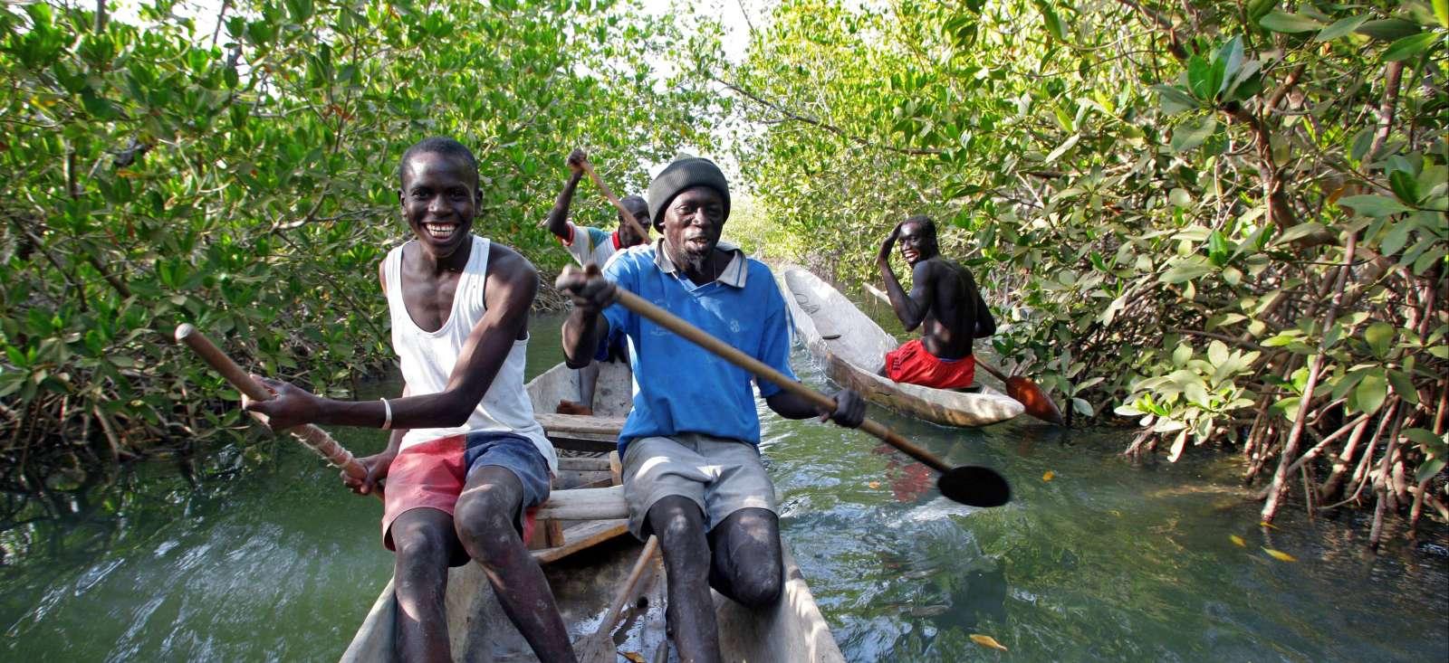 Voyage à pied : En pirogue au Siné Saloum