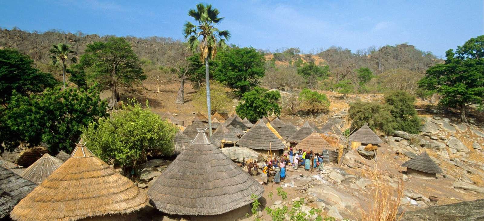Voyage avec des animaux : Rando et Safari en Pays Bedik et Bassari