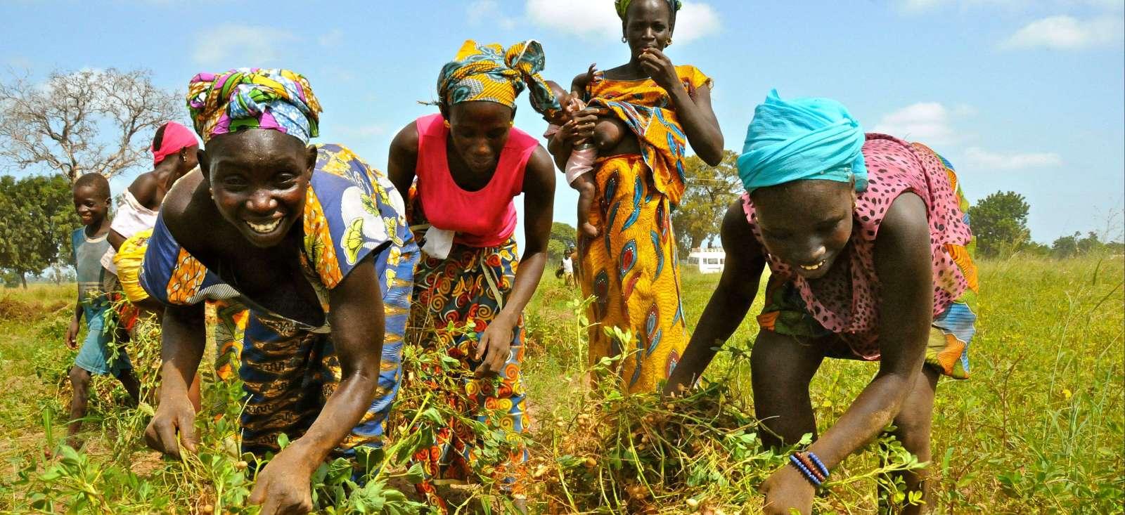 Voyage à pied : Sénégal : Immersion dans le Siné Saloum