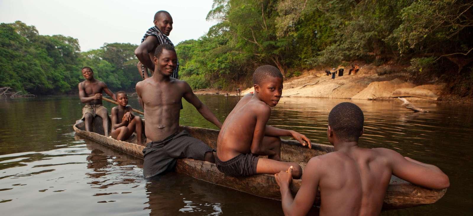 Voyage avec des animaux : Au cœur de la forêt tropicale !