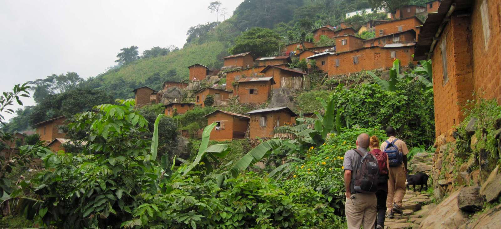 Voyage à pied : Forêts tropicales, villages et cascades