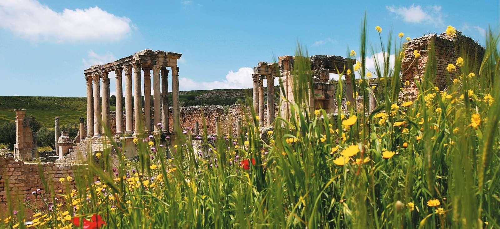Voyage à pied : De Carthage à Tabarka