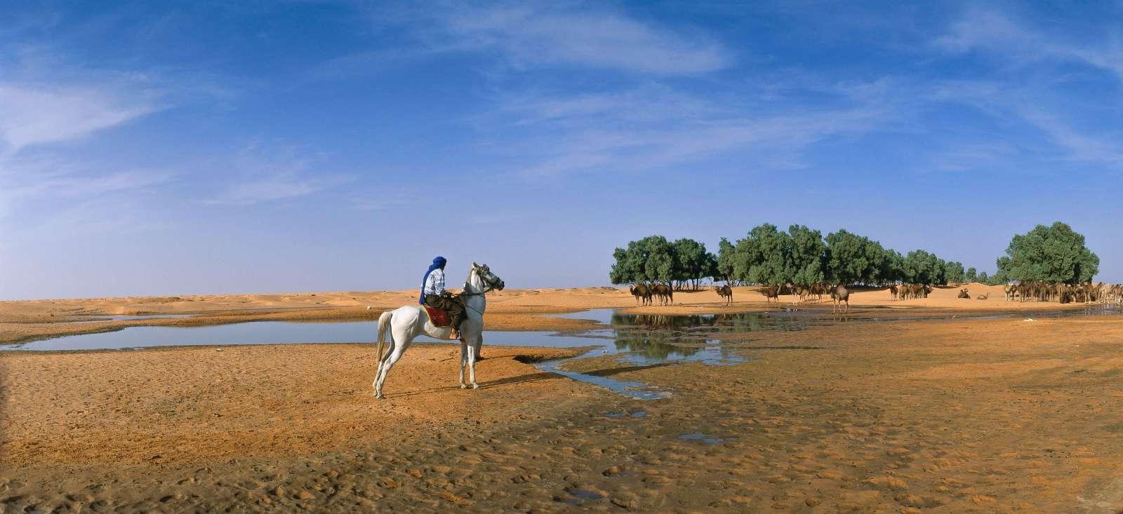 Voyage à pied : Chevauchée aux portes du Sahara