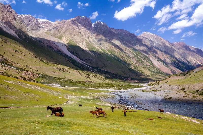 Voyage à pied : Turquie : 77 jours et 4 étapes sur la Route de la Soie