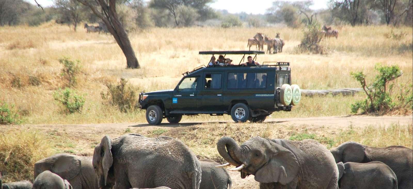 Voyage en véhicule Tanzanie : Des parcs du Nord à Zanzibar !