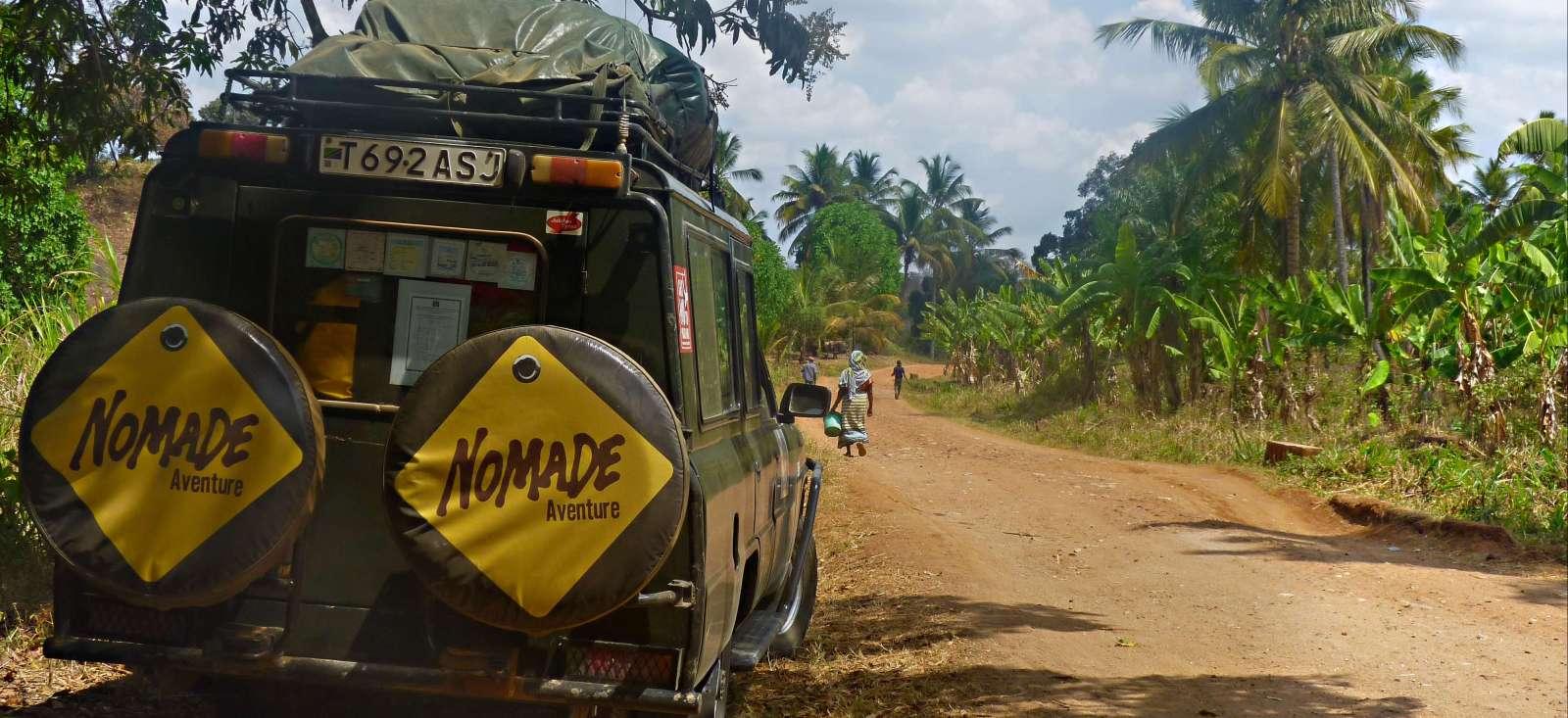 Voyage avec des animaux Tanzanie : Trek sur le Kilimandjaro, Safari & Zanzibar