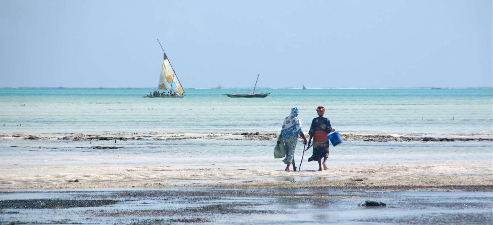 Voyage à pied : Zanzibar, l�île épicée !