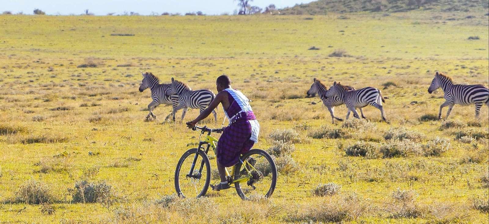 Voyage avec des animaux Tanzanie : Safari VTT en Tanzanie !