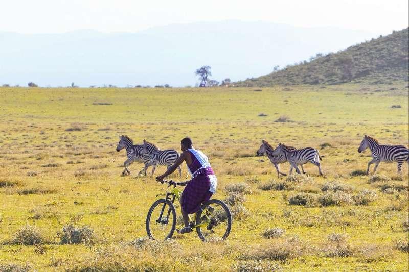 Voyage avec des animaux : Safari VTT en Tanzanie !