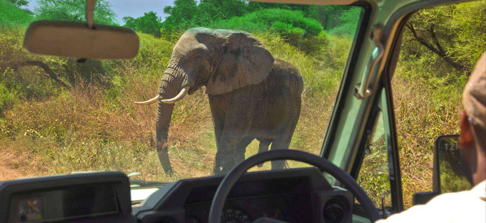 Voyage à pied : Safari Express