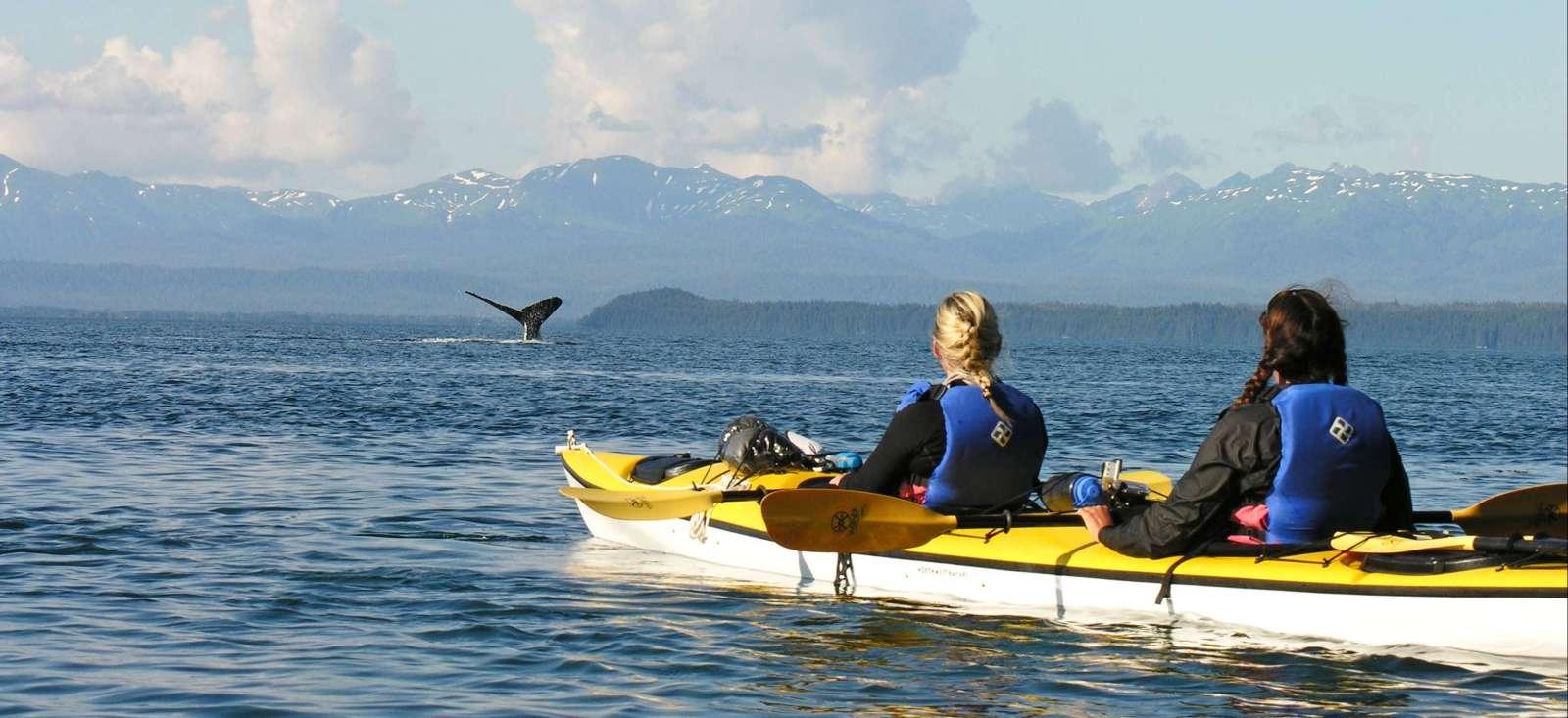 Voyage sur l'eau États-Unis : Kayak de mer en Alaska