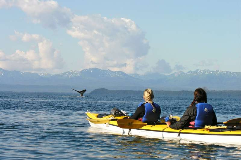 Image Kayak de mer en Alaska