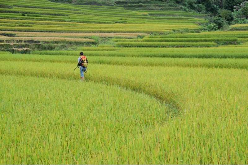 Image Balade authentique dans le nord du Vietnam
