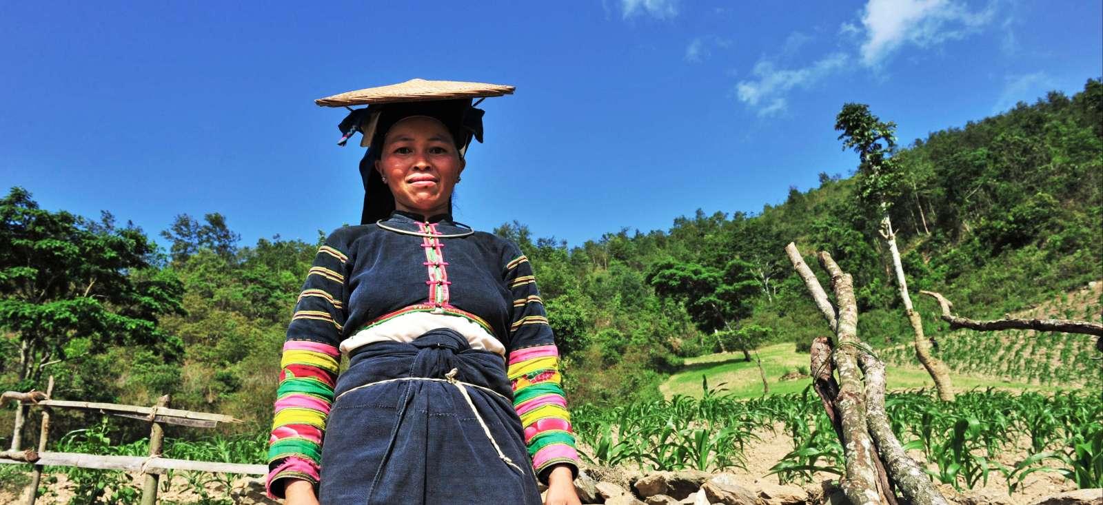 Voyage à pied : Lô Lô noir, ethnies du nord & Baie d\' Halong